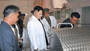 """criza alimentară din Coreea de Nord: """"Liderul genial"""" Kim Jong-Un a găsit soluţia: """"Construiţi o fermă de porci!"""""""
