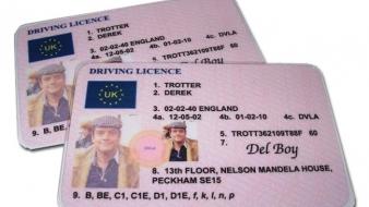 Modelul unic de permis de conducere