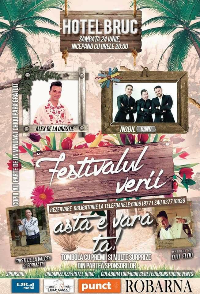 Festivalul Verii 2017
