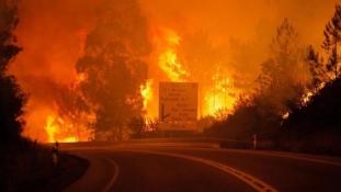 Incendiu devastator in Portugalia