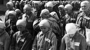 27 ianuarie – ziua internațională pentru comemorarea victimelor nazismului