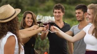 Fira de Vi – Festivalul Vinului Girona, sau despre cât de uşor te poţi îndrăgosti de Girona