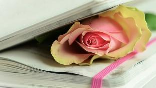 """Vis Universal, – din """"Cercuri Ovale ce Râd"""" poeme, poezii, pamflete"""